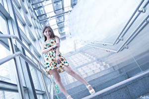 Picture Asiatic Stairs Smile Hands Legs Frock Girls