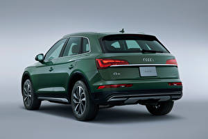 Pictures Audi CUV Green Metallic Gray background Back view Q5 40 TDI quattro advanced, JP-spec, 2021 automobile