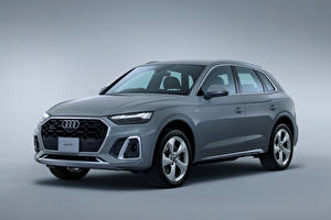 Wallpapers Audi Crossover Gray Metallic Gray background Q5 45 TFSI quattro S line, JP-spec, 2021 auto