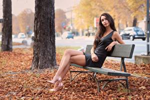 Pictures Autumn Leaf Bench Sit Brown haired Dress Hands Legs High heels young woman
