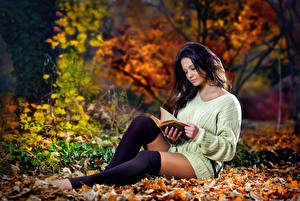 Wallpapers Autumn Foliage Brunette girl Sweater Book Hands Sitting Read Legs Knee highs young woman