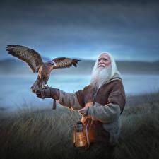 Tapety na pulpit Ptaki Lampa naftowa Stary mężczyzna Bokeh Elena Shumilova