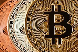 Pictures Bitcoin Closeup Coins