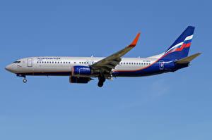 Hintergrundbilder Boeing Flugzeuge Verkehrsflugzeug Seitlich 737-800W, Aeroflot