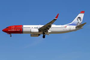 Fonds d'écran Boeing Avions Avion de ligne Latéralement 737-800W, Norwegian Air International Aviation
