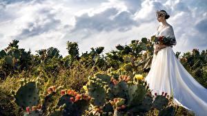 Fotos Kakteen Sträuße Heirat Bräute Kranz Kleid