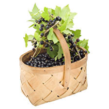 Wallpaper Currant Berry Wicker basket Leaf White background Food