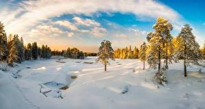Wallpaper Finland Winter Snow Trees Clouds Koitelinkoski Nature