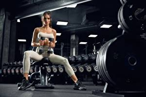Photo Fitness Gym Dumbbell Sitting Workout Glance young woman Sport