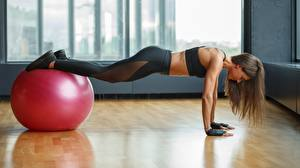 Bilder Fitness Unterarmstütz Ball junge Frauen Sport