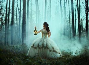 Bilder Wald Brünette Nebel Kleid Hand Lampe