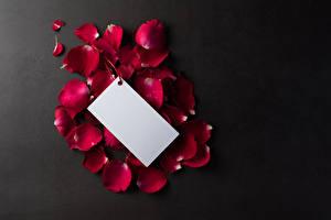 Hintergrundbilder Grauer Hintergrund Vorlage Grußkarte Blütenblätter Burgunder Farbe Blatt Papier Blumen