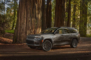 Images Jeep SUV Gray Metallic 2021 Grand Cherokee L Summit