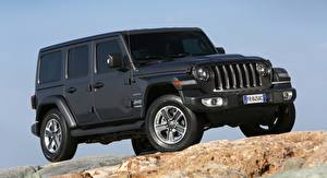 Image Jeep SUV Black Wrangler, Unlimited Sahara, EU-spec, 2018 automobile