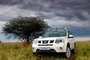 Images Nissan White Metallic SUV Grass X-Trail, ZA-spec, (T31), 2010-14 Cars