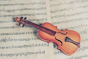 Bakgrundsbilder på skrivbordet Noter Musikinstrument Violin