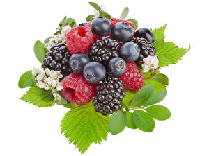 Images Raspberry Blackberry Blueberries Berry Leaf White background Food