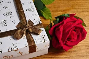 Bilder Rose Schachtel Geschenke Band Schleife Blumen