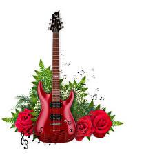 Hintergrundbilder Rosen Noten Ast Gitarre Weißer hintergrund
