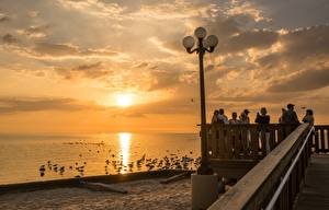 Pictures Sunrise and sunset Bird Seagulls USA Waterfront Street lights Florida Cities
