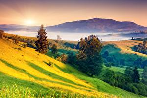 Wallpapers Sunrises and sunsets Landscape photography Grass Hill Trees Fog