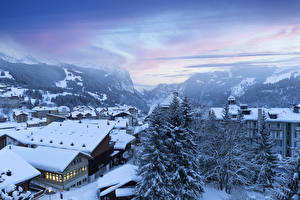 Images Switzerland Winter Houses Mountains Snow Spruce Wengen Cities
