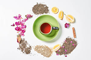 Pictures Tea Lemons Cinnamon White background Cup Petals Food
