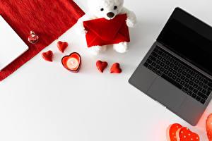 Fondos de escritorio Osito de peluche Día de San Valentín Computadora portátil Corazón Sobre Tarjeta de felicitación de la plant
