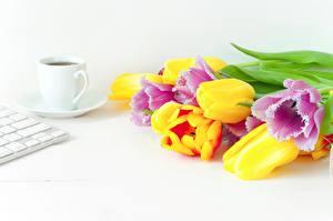 Papel de Parede Desktop Tulipas Buquê Café Multicolor Chávena Flores Alimentos