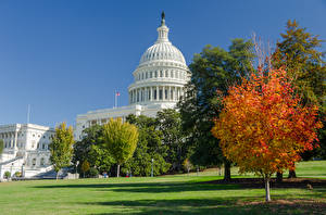 Picture USA Autumn Washington Trees Grass Capitol Cities