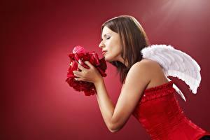 Bakgrunnsbilder Engel Rød bakgrunn Vinger Sett fra siden Brunt hår kvinne Korsett Hender Kronbladene Unge_kvinner