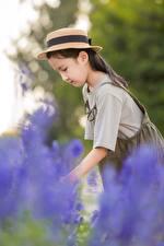 Images Asiatic Bokeh Hat Side Little girls child