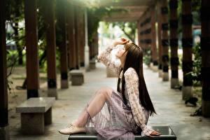 Fonds d'écran Asiatique Bokeh Latéralement Aux cheveux bruns S'asseyant Main Jambe jeunes femmes