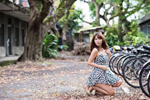 Fonds d'écran Asiatique Aux cheveux bruns Bokeh Les robes Vélo jeunes femmes
