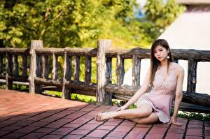 Sfondi desktop Asiatico Ragazza capelli castani Recinzione Seduto Vestito Le mani Le gambe giovane donna