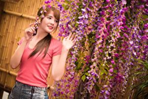 Bilder Asiatische Braune Haare Starren Hand junge Frauen
