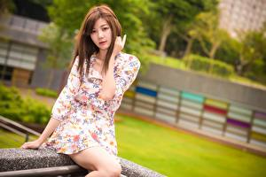 Bilder Asiaten Braune Haare Starren Hand Kleid Sitzt Mädchens