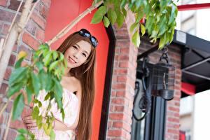 Hintergrundbilder Asiatische Braune Haare Brille Lächeln Starren Mädchens