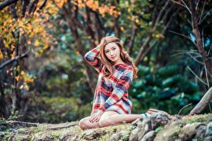 Fonds d'écran Asiatique Les robes Assises Bokeh Voir jeune femme