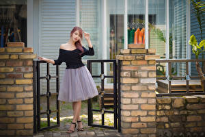 Picture Asiatic Fence Brown haired Hands Legs young woman