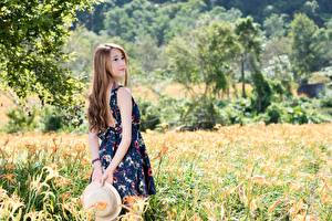 Pictures Asian Grass Brown haired Blurred background Hat Frock young woman