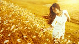Pictures Asian Meadow Brown haired Gown Grass Hands Girls