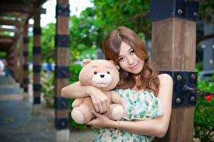 Wallpapers Asiatic Teddy bear Toy Blurred background Brown haired Staring Hugs young woman