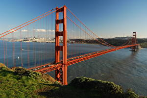 Image Bridge USA California San Francisco Grass Bay Golden Gate Bridge Cities