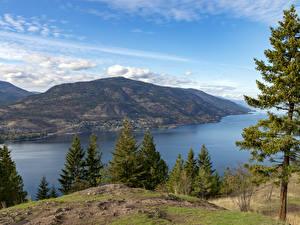 Fotos Kanada Flusse Hügel Fichten Kelowna, British Columbia Natur
