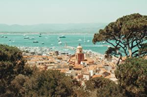 Pictures Coast France Ships Trees Saint-Tropez, Var department, arrondissement Draguignan, canton Saint-Maxime