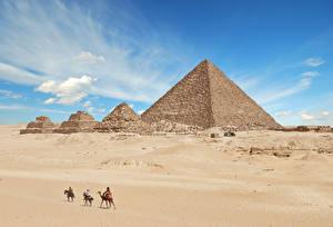 Fotos Ägypten Wüste Kamele Ruinen Pyramide bauwerk Giza Natur