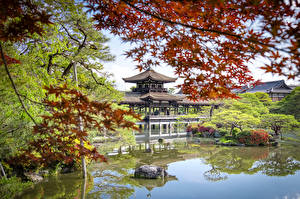 Pictures Japan Temples Kyoto Pond Trees Taihei-kaku