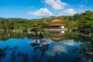 Fonds d'écran Japon Temple Étang Kyoto Arbres Kinkaku-ji, Rokuon-ji, Kita Villes images
