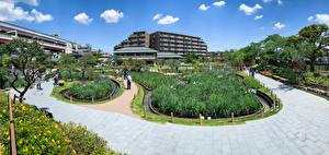 Sfondi desktop Giappone Tokyo Giardino Horikiri iris garden Città